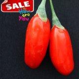 Hierbas orgánicas Goji rojo Berries-380PCS/50g del níspero