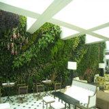 Vendas quentes & parede artificial da planta da fabricação verde