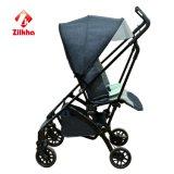Baby-Spaziergänger für H176