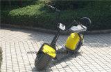 2016 Rad-elektrische Roller-Stadt-Cocos des Form-neues Entwurfs-zwei
