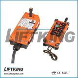 Radiosteuerung 6directions für Kran (F21-6S)