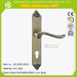 콤비네이션 자물쇠를 가진 구체 활자 문 손잡이 자물쇠
