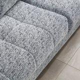 El sofá moderno de los muebles del mejor precio fijó para la sala de estar (FB1115)