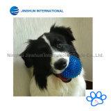Dientes flotantes animosos de TPR que limpian el juguete chillón de la bola de punta para los perros