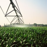 Kleines Bauernhof-Bewässerungssystem