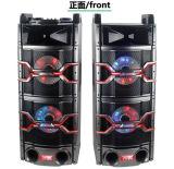 Altofalante grande passivo de Bluetooth do estágio da potência de Feiyang/Temeisheng---T241