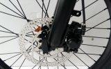 衝撃吸収材が付いている250W軽いFoldable Eバイク
