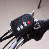 Bicicleta elétrica fácil Ebike da bicicleta 36V 250W da dobradura 20 de ''