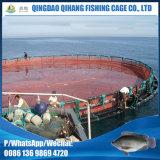 Kreis-sich hin- und herbewegende Aquakultur-Fischzucht-Rahmen gebildet PET vom knotenlosen Netz