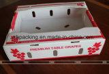 Quatre cadres ouverts/ont ridé la boîte en plastique/cadre se pliant avec la couleur blanche de traitement profonde 3mm de clous 4mm 5mm