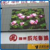 pH16 옥외 정면 접근 정면 서비스 발광 다이오드 표시 벽