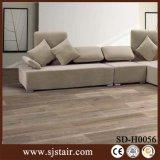 Porcellana composita del grano del parchè di legno della pavimentazione che pavimenta pavimentazione dell'interno