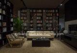 Sofà del cuoio di stile di modo del sofà di Divany (D-73-C)