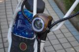 18*9.5 vette Band met de Voor en AchterAutoped Citycoco van de Schok 1000W (jy-ES005)