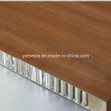 Los paneles de aluminio decorativos incombustibles de la fachada de la pared exterior del panal