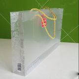 Fábrica oferece bolsa de presente de plástico de design novo personalizado com alça de grampo (saco de compras impresso)