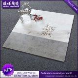 Foshan-Form-keramische Wand-Fliese für Küche