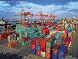 شحن [40فت/] 40 '/[40غب] وعاء صندوق من الصين إلى عالميّا