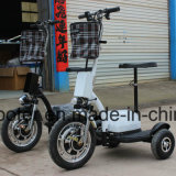 "gengibre elétrico elétrico do ""trotinette"" da bicicleta 3-Wheel do motor do cubo 350W"