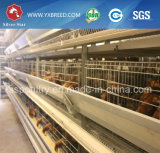 Equipamento de aço das aves domésticas da gaiola da galinha Q235 para a camada ou a grelha