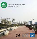 Assoalho plástico de madeira durável oco do revestimento do composto WPC