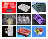 Bandeja de ovo de plástico / Bandeja de bolhas / Bandeja de empacotamento / Bandeja de alimentos / Caixa de almoço / tampas Fazendo linha de produção Máquina de termoformagem a vácuo