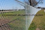 صاحب مصنع إمداد تموين تصدير [هيغقوليتي] يصمّم [وير مش]/[شين لينك] [بريمتر فنس] عمليّة بيع متوفّر على شبكة الإنترنات