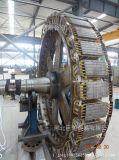 Мотор серии Tl вертикальный высоковольтный одновременный