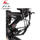 アルミ合金700c Spanninga前部LED都市E自転車(JSL033A-14)