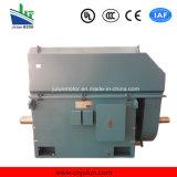 motore a corrente alternata Trifase ad alta tensione di raffreddamento Air-Air di serie di 6kv/10kv Ykk Ykk5602-8-630kw