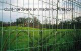 Нидерландская сеть в сетке Wesh хорошего качества