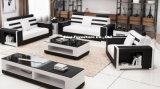 Mobilia moderna di cuoio pura dell'Italia con il tavolino da salotto e basamento della TV per il salone