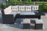 柳細工の藤のカンザスの屋外のテラスの家具のラウンジの一定の庭(J545)