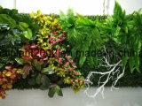 Runde Wand-Kunst-hängende Dekoration-künstliche Pflanzenfertigkeiten