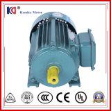 Universeller elektrischer Wechselstrommotor (Ys Serien)