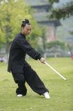 Tai van het taoïsme de Hoogwaardige Lente van de Chi & Kleding van de Kraag van de Tribune van het Linnen van de Herfst de Dikke