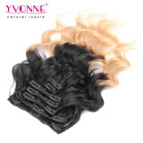 Ombre peruviano Human Hair Clip in Hair Extensions