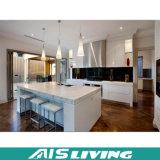 Projeto individual da cozinha, mobília feita sob encomenda do gabinete de cozinha do MDF (AIS-K156)
