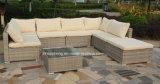 Insieme esterno della mobilia del rattan della mobilia del giardino del sofà esterno del rattan Hc-W-T071