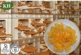 Kingherbs′ Olio naturale della spora di 100% Reishi/Ganoderma Lucidum