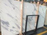 이탈리아는 Statuari 대리석 석판 눈 연백 안료 대리석 석판을 가져왔다
