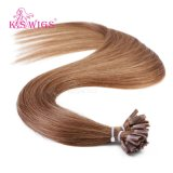 U-Tip indiano Hair Extensions do K.S Wigs 6A Remy Virigin Human Hair