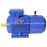 Motore di CC|Motore asincrono elettromagnetico a tre fasi del freno