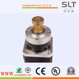 Variable Speed를 가진 2단계 Electric Step Stepper Motor
