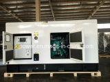 Cummins Engine의 250kVA Soundproof Diesel Generator Set Powered
