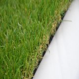Landschaftsgestaltung des Gras Comforbale Grases Bsb