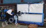 Fabricante de gelo do bloco com fabricante do triturador