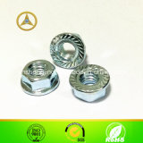 DIN6331 Hexagon Nut, Collar, Zinc Plated.를 가진 1.5D
