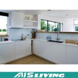 Mobilia australiana dell'armadio da cucina con il dispersore (AIS-K092)