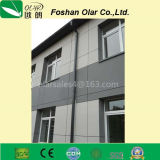 외부 벽면색깔 을%s 섬유 시멘트 널 높은 조밀도